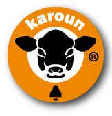 Karoun Cheese- Karoun Dairies